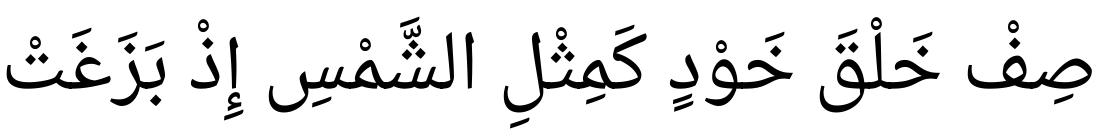 Droid Arabic Naskh