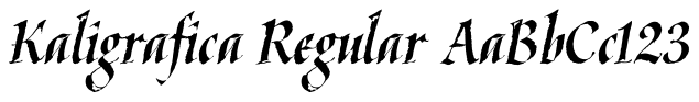 Kaligrafica, Kaligraf
